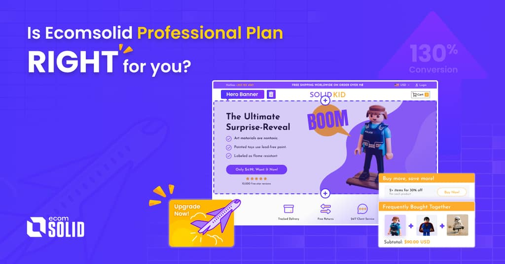 What is in EcomSolid Professional plan?